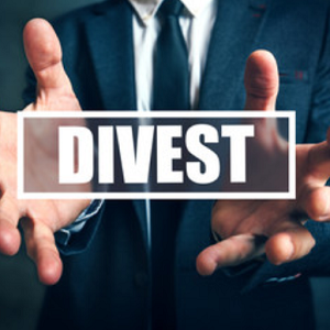 Business Divestment