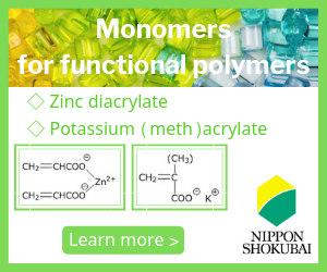 Monomers for functional Polymers
